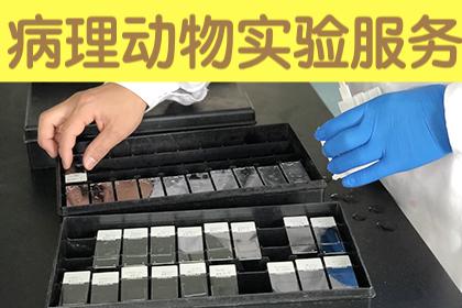 【推荐 医学科研动物病理检测整体课题实验外包技术服务】