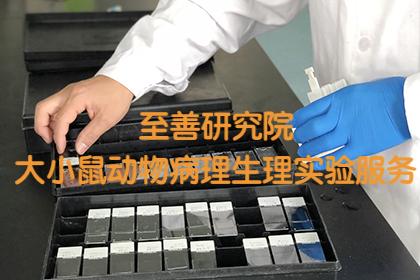【推荐专业医学科研动物病理药物药效实验外包代做服务】